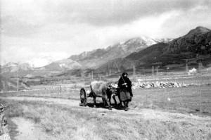 camino-san-emiliano-1952-compressor
